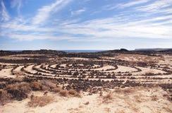 Círculos de piedra en Lanzarote Imagen de archivo