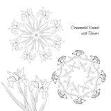 Círculos decorativos com flores Imagens de Stock Royalty Free
