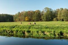 Círculos do feno que encontram-se em um prado verde perto da floresta e do rio fotografia de stock