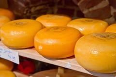 Círculos do queijo imagem de stock
