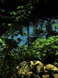 Círculos en el agua Imagen de archivo libre de regalías