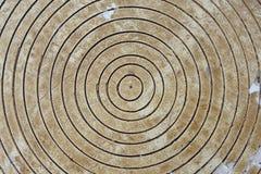 Círculos en madera imagenes de archivo