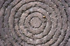 Círculos en una piedra con la serpiente Imágenes de archivo libres de regalías