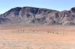 Círculos feericamente - Namíbia Foto de Stock Royalty Free