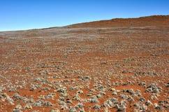 Círculos feericamente - Namíbia Imagens de Stock