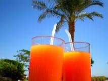 Cóctel anaranjado debajo de una palmera Fotos de archivo libres de regalías