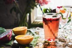 Cóctel de la frescura de la bebida del ponche de fruta fotos de archivo