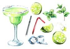 Cóctel de Margarita con los cubos de los elementos cal, de la menta y de hielo de la decoración Ejemplo dibujado mano de la acuar ilustración del vector