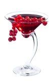 Cóctel de martini del Redcurrant Foto de archivo libre de regalías