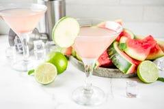 Cóctel de martini de la sandía imagenes de archivo