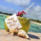Cóctel del Caribe de los cocos de la playa del paraíso Fotografía de archivo