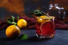 Cóctel del invierno con las frutas y el canela Imagen de archivo