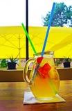 Cóctel hecho en casa de la limonada fresa de la menta de la cal Imagenes de archivo