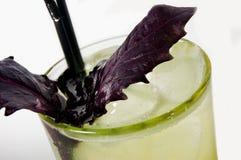 cócteles alcohólicos con albahaca imagenes de archivo