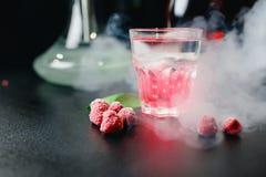 Cócteles rosados brillantes del color famoso con alcohol, frutas y bayas con romero y la menta en fondo oscuro imágenes de archivo libres de regalías
