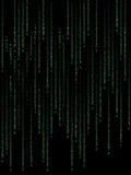 Código binário verde Fotos de Stock