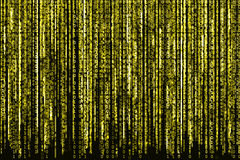 Código binario amarillo Fotos de archivo