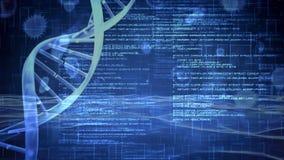 Código binario giratorio del rato de la DNA