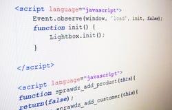 Código de la lengua del Javascript Foto de archivo libre de regalías