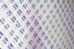 Código de la secuencia de la proteína Fotos de archivo