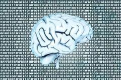 Código del cerebro Imágenes de archivo libres de regalías