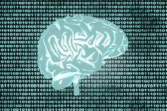 Código del cerebro Foto de archivo libre de regalías