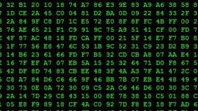 Código hexadecimal verde que funciona con para arriba una pantalla de ordenador ilustración del vector