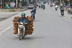 Cómo 50 pollos cruzan el camino Fotos de archivo
