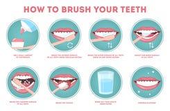 Cómo cepillar sus instrucciones paso a paso de los dientes stock de ilustración