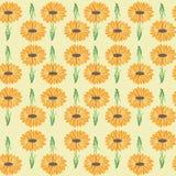 Cópia brilhante do jardim da margarida que repete o teste padrão sem emenda ilustração royalty free