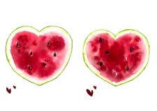 Cópia com melancias brilhantes, cartão brilhante da aquarela do verão do verão imagens de stock