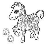 A cópia da pata com coloração da zebra pagina o vetor Foto de Stock