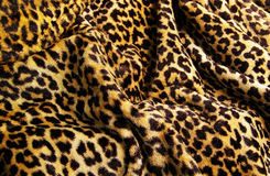 Cópia do leopardo Fotografia de Stock Royalty Free
