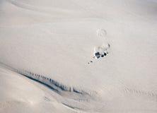 Cópia do pé na areia molhada. Imagem de Stock Royalty Free