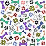 Cópia e osso da pata do animal de estimação Imagens de Stock Royalty Free