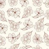 Cópia floral Teste padrão sem emenda botanical ilustração do vetor