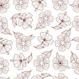 Cópia floral Teste padrão sem emenda Ornamento botânico T monocromático ilustração royalty free