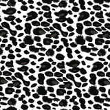 Cópia preto e branco do leopardo Fotos de Stock