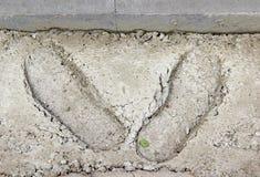 Cópias da bota no concreto endurecido foto de stock royalty free