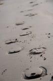 Cópias da sapata do cavalo na areia imagens de stock royalty free