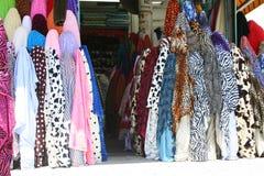 Cópias da zebra imagem de stock