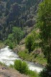 Córrego 1 da montanha de Colorado fotos de stock