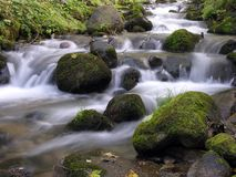 Córrego Imagens de Stock Royalty Free