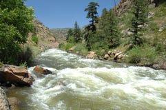 Córrego 15 da montanha de Colorado fotos de stock