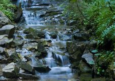 Córrego Foto de Stock
