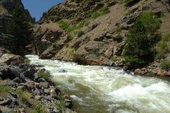 Córrego 23 da montanha de Colorado imagem de stock