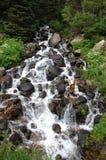 Córrego 33 da montanha rochosa fotos de stock