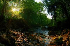 Córrego Fotos de Stock