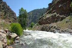 Córrego 5 da montanha de Colorado fotos de stock
