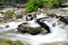 Córrego Fotos de Stock Royalty Free
